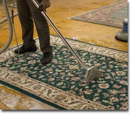 organic rug cleaning staten island