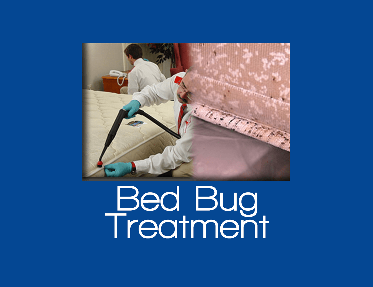Bed Bug Treatment Staten Island