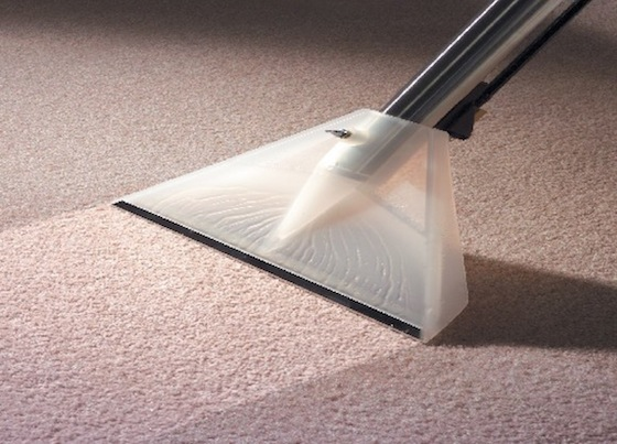 expert carpet cleaning gear staten island
