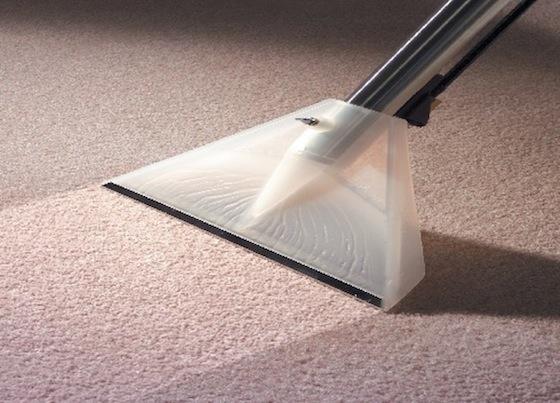 expert carpet cleaning gear staten island
